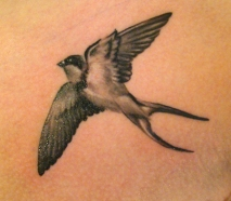 This-artistic-black-and-white-swallow-tattoo-is-posed-as-though-viewed-from-below