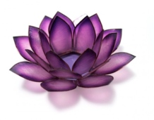 Violet-Crown-Chakra-Lotus_large