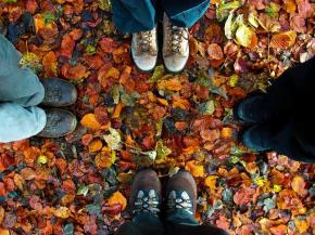 Energy Forecast: Happy Autumn Equinox2013!